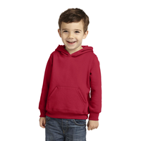 Precious Cargo Toddler Pullover Hooded Sweatshirt CAR78TH